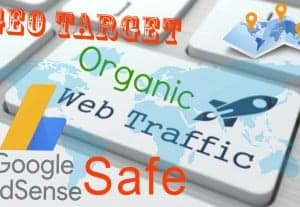 I Will Send Geo Target, Adsense Safe, Niche Related, Real Organic Visitors
